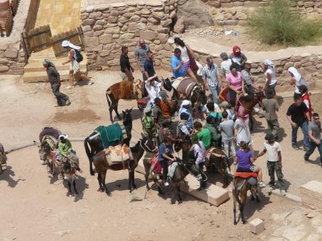 Petra, Jordan donkey touts tourism