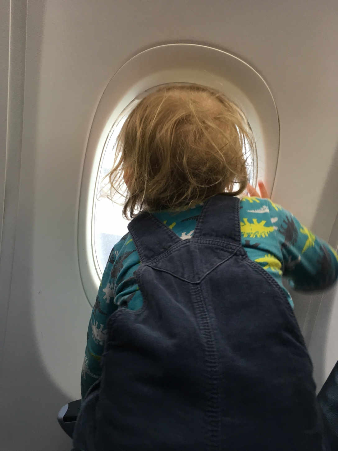 child looking out the window of a plane, baby travel